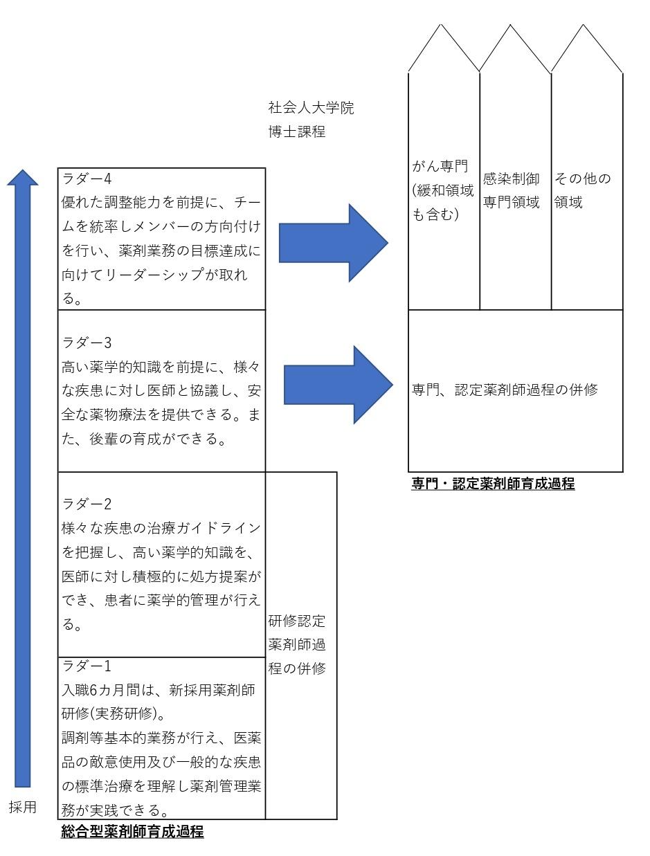 薬剤部新人教育体系概念図
